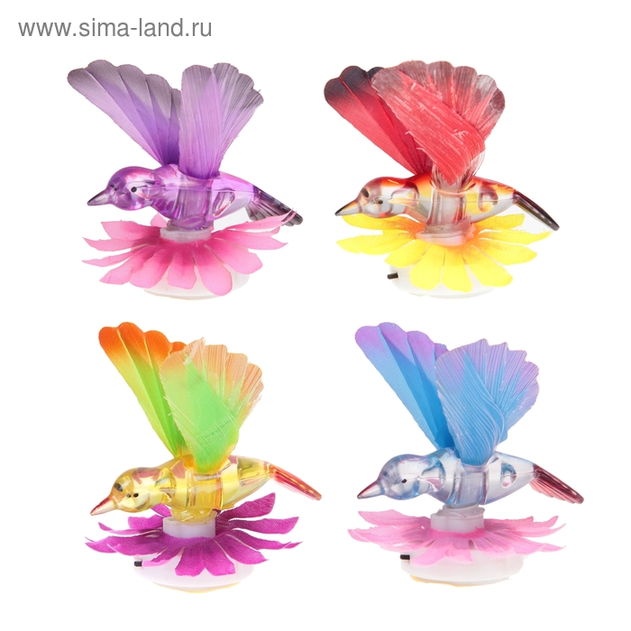 Колибри световая на цветочке, цвета МИКС