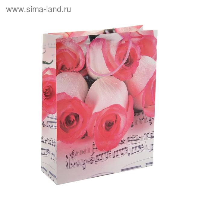 """Пакет пластиковый """"Розы и ноты"""""""