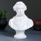 Бюст Пушкин большой белый 22 см