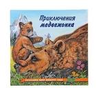 «Приключения медвежонка», Гурина И. В. - фото 982309
