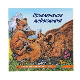 «Приключения медвежонка», Гурина И. В.