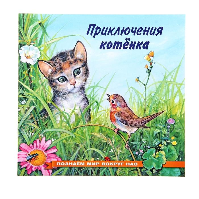 «Приключения котёнка», Гурина И. В. - фото 982311