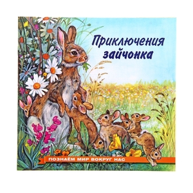 Приключения зайчонка. Гурина И. В.