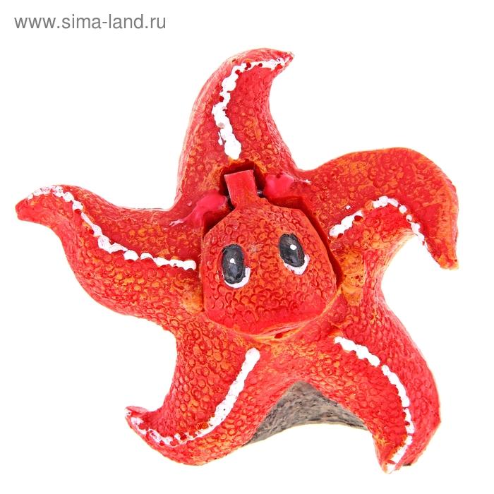 """Распылитель """"Морская звезда"""", 11 х 6,5 х 10,5 см"""