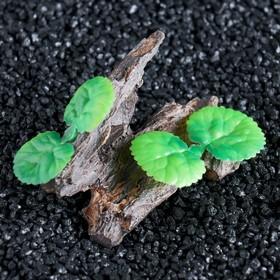 """Грот """"Коряга"""" с растениями, 11 х 6,5 х 6 см"""