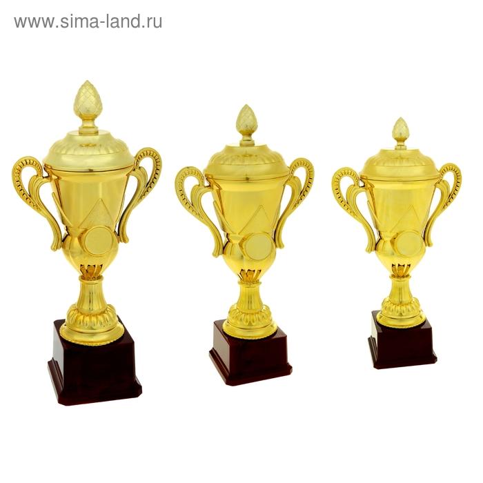 Кубок спортивный 021С