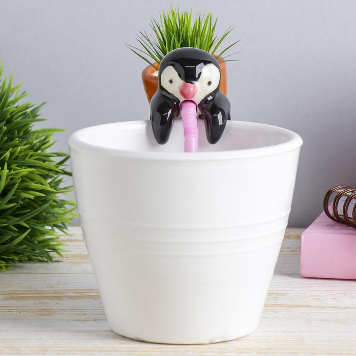"""Растущая трава """"Пингвин"""""""