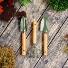 Набор садового инструмента, 3 предмета: совок узкий, совок широкий, рыхлитель, длина 20 см, деревянные ручки