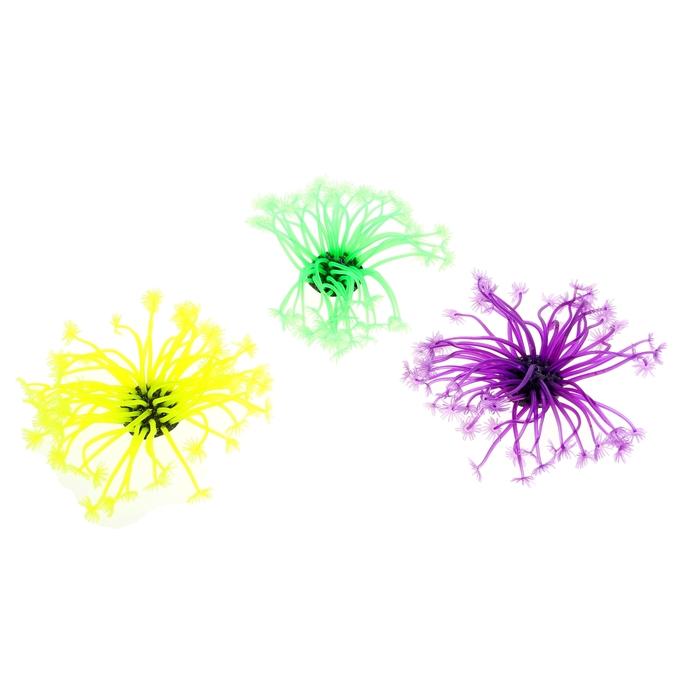 Декоративный коралл для аквариума, 9 х 8 х 8 см, микс цветов
