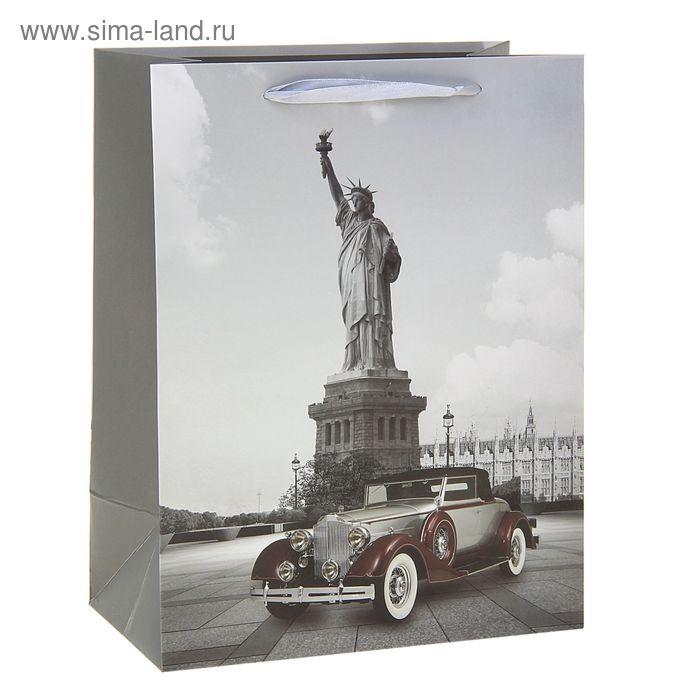 """Пакет ламинированный """"Моменты истории. Америка"""""""