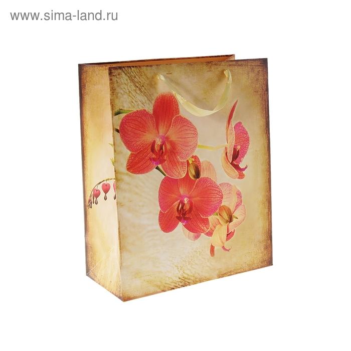 """Пакет ламинированный """"Орхидея"""""""