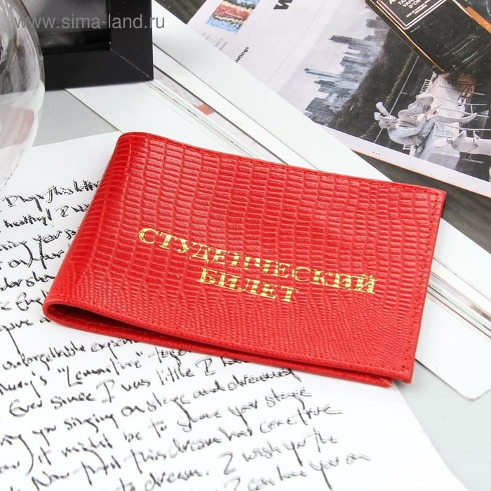 Обложка для студенческого билета, красная игуана