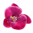 """Зажим """"Орхидея"""", цвет фуксия"""