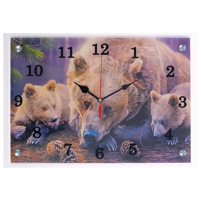"""Часы настенные прямоугольные """"Медведи"""", 25х35 см микс"""