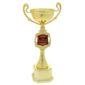 """Кубок """"Поздравляем. За выдающиеся достижения"""""""