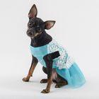 """Платье """"Нежность"""", размер XL, голубое (длина спинки - 42 см, объем груди - 54 см)"""