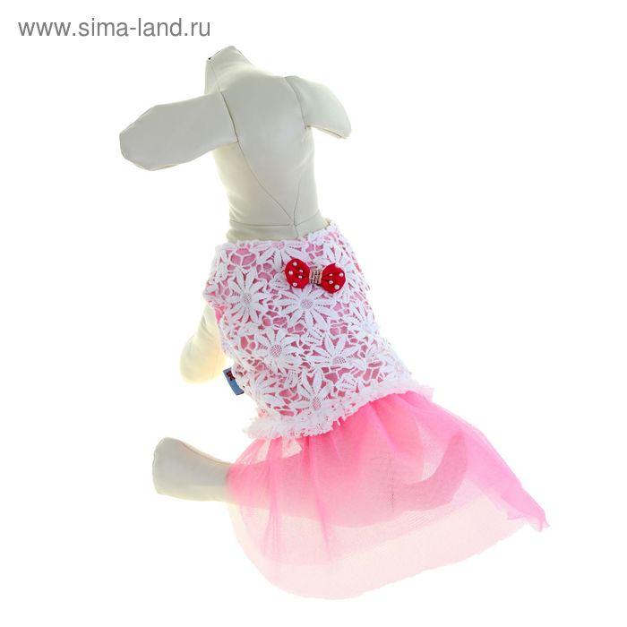 """Платье """"Нежность"""", размер XS, розовое (длина спинки - 23 см, объем груди - 32 см)"""