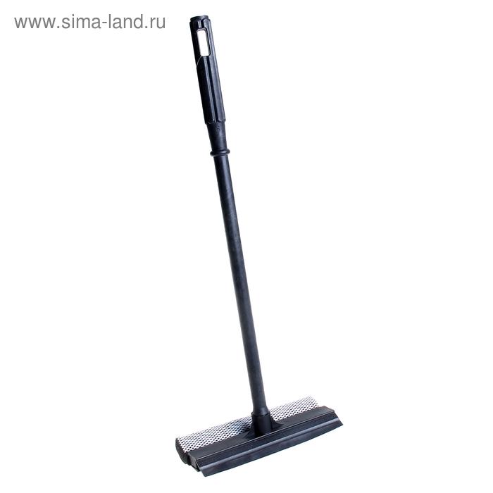 Oknemika narrow, stalk 50cm