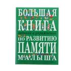 Большая книга заданий и упражнений по развитию памяти малыша. Светлова И. Е.