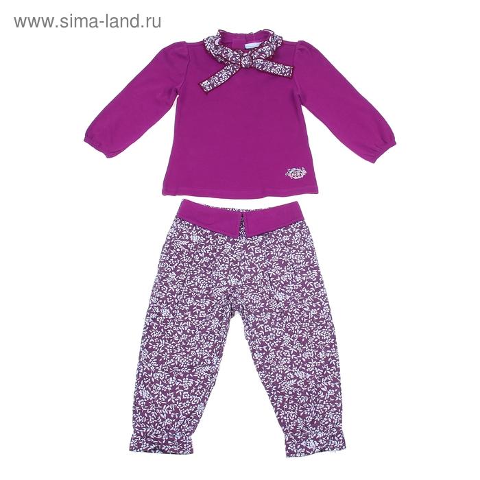 """Комплект для девочки """"Лесная фея"""": кофта, штанишки, рост 92-98 см (18-24 мес.) 9199IC1369"""