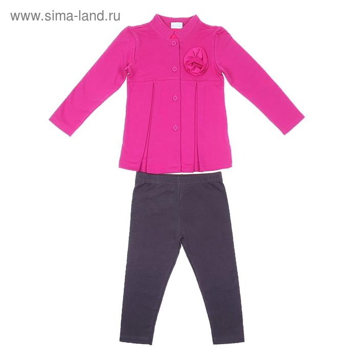 Комплект для девочки: кофта с цветком, леггинсы, рост 98-104 см (3-4г.) 9199CC1302