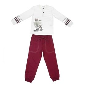 """Комплект для мальчика """"Лесная прогулка"""": кофта, брюки, рост 98-104 см (3-4г.), цвет микс 9199CD1600"""
