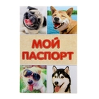 Ветеринарный паспорт международный для собак