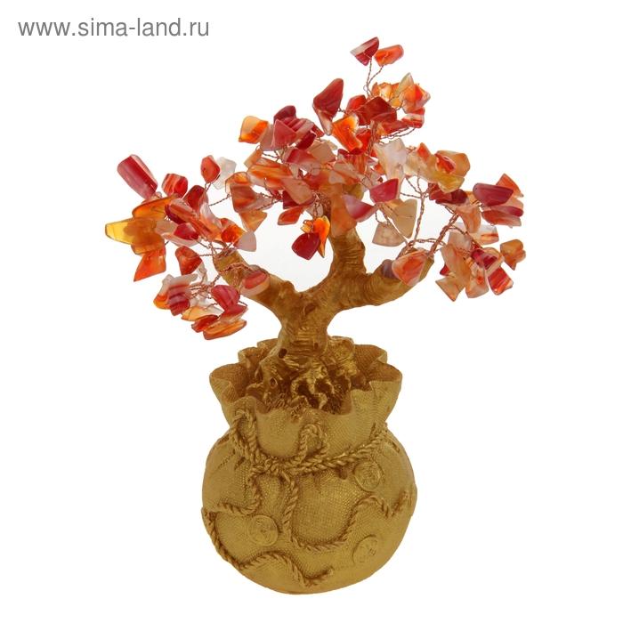 """Денежное дерево """"Мешочек"""""""