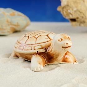 """Декорация для аквариума """"Черепаха"""" микс, 3 х 5 х 2 см"""