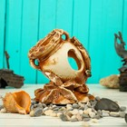 """Декорация для аквариума """"Амфора на ракушке"""", 12 х 15 х 16 см, микс"""