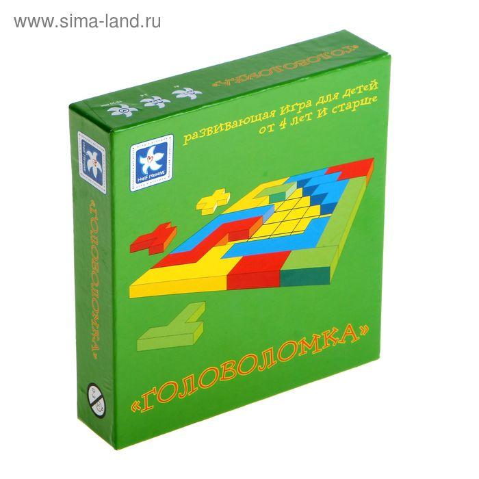 """Логическая  игра """"Головоломка"""" НПД111"""