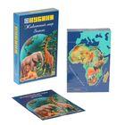 """Набор кубиков """"Животный мир Земли"""", 12 штук + книжка"""