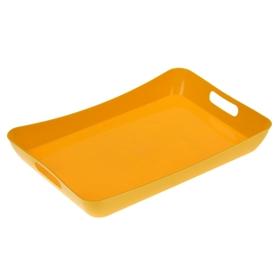Поднос «Funny», 42,2×28,2×5,2 см, цвет жёлтый