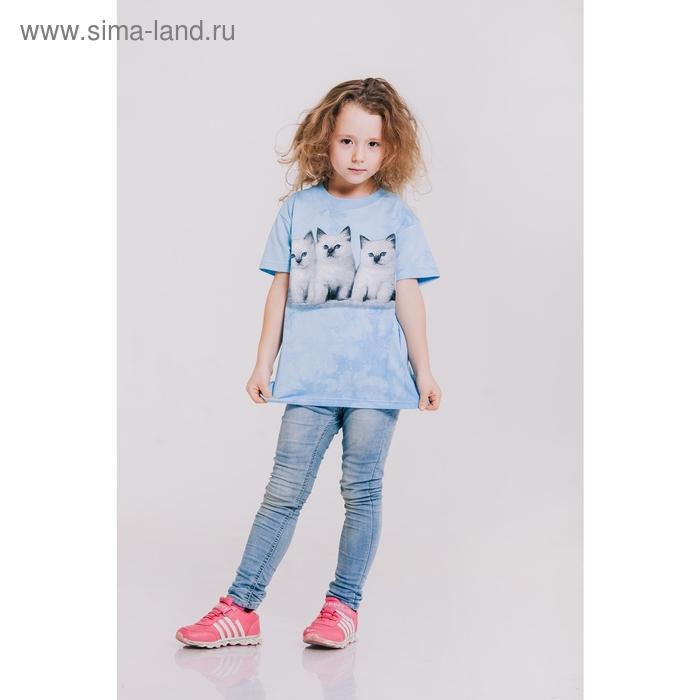 Футболка детская Collorista 3D Kittens, возраст 4-6 лет, рост 110-122 см, цвет голубой