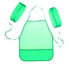 Фартук для труда + нарукавники, Стандарт (фартук: 485х395 мм, нарукавники 250х120 мм) зелёные