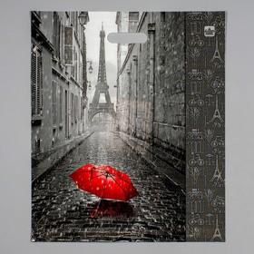 """Пакет """"Мой Париж"""", полиэтиленовый с вырубной ручкой, 38 х 45 см, 60 мкм"""