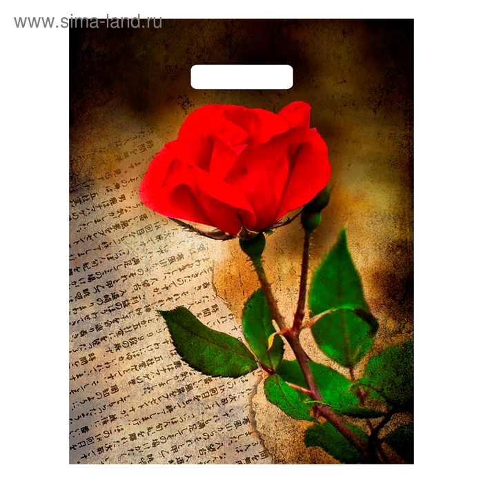 """Пакет """"Китайская роза"""", полиэтиленовый с вырубной ручкой, 45х38 см, 60 мкм"""