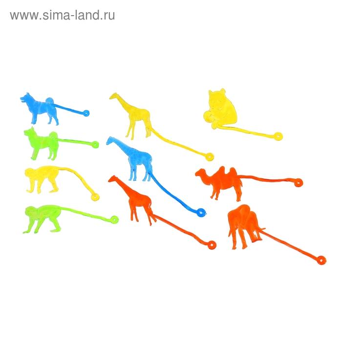 "Липучка ""Животные"", цвета МИКС"