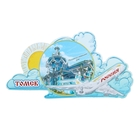 "The magnet with the plane ""Tomsk"""
