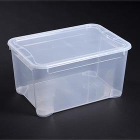 Ящик для хранения с крышкой «Кристалл», 55×39×29 см, цвет прозрачный