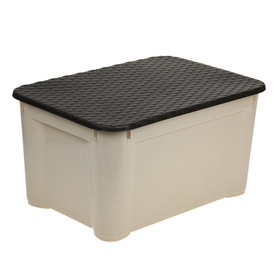 Ящик для хранения с крышкой econova «Ротанг», 55×29×39 см, цвет МИКС