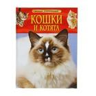 Детская энциклопедия «Кошки и котята»