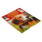 Детская энциклопедия «Собаки и щенки» - фото 106536722