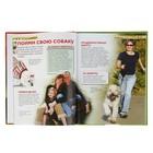 Детская энциклопедия «Собаки и щенки» - фото 106536723