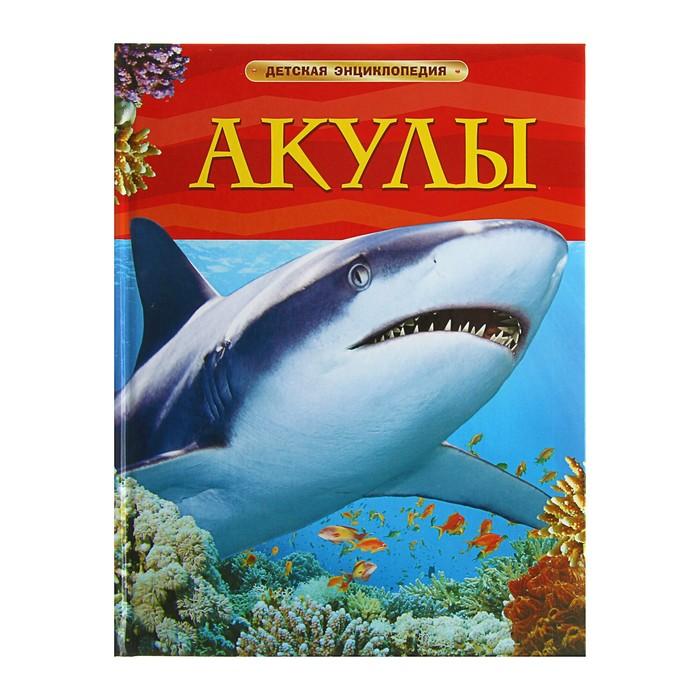 Детская энциклопедия «Акулы» - фото 106536794