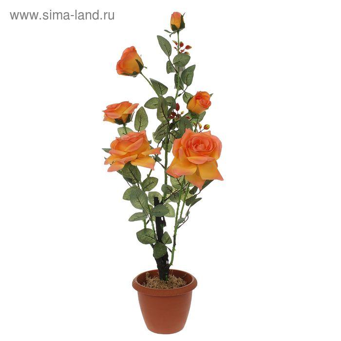 "Композиция в горшке ""Французская роза"" (микс)"