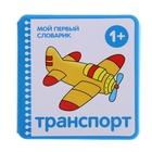 """Мой первый словарик """"Транспорт"""" (EVA). Автор: Краснушкина Е.Е."""