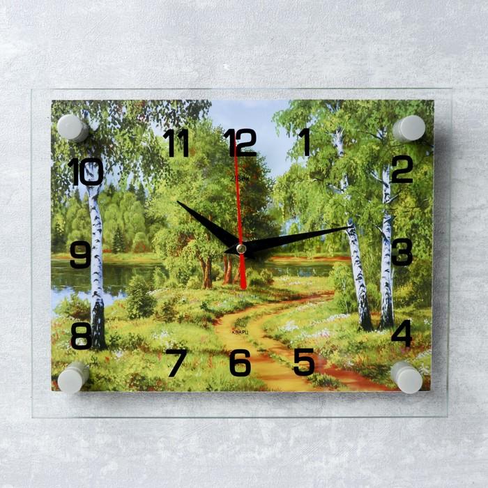"""Часы настенные, серия: Природа, """"Лесная дорога"""", 20х26  см, микс"""