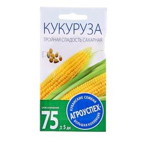 Семена Кукуруза Тройная сладость ранняя, 5г Ош