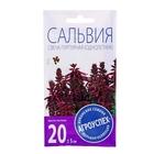 Семена цветов Сальвия Свеча пурпурная F1, О, 10 шт